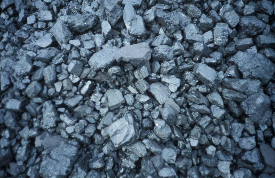 steenkool.jpg (... O Steen S
